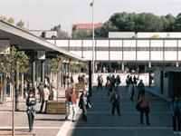 Diseño y dirección de obras de plazas en universidades